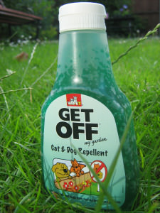 Get Off My Garden Cat Repellent Review The Scaredy Cat