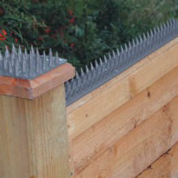 Will A Cat Fence Keep Cats Out Of Your Garden The